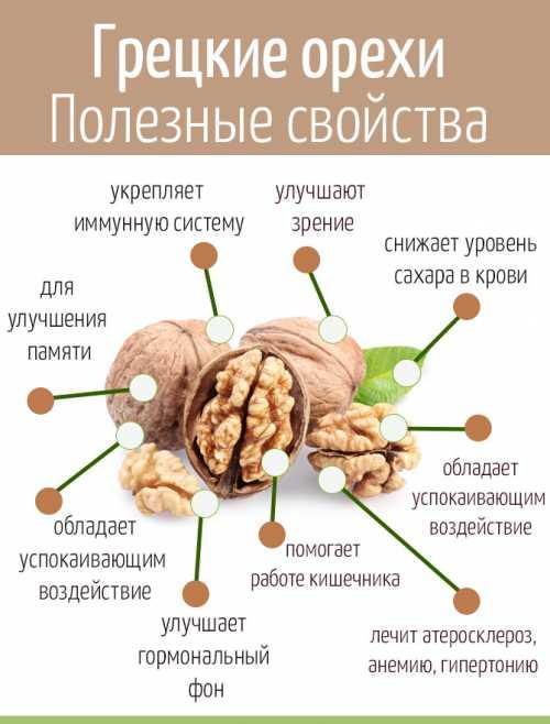 польза, вред и калорийность моркови по